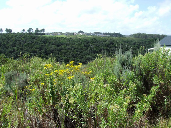 Property Ref: 04526, PEZULA GOLF ESTATE - Vacant Land