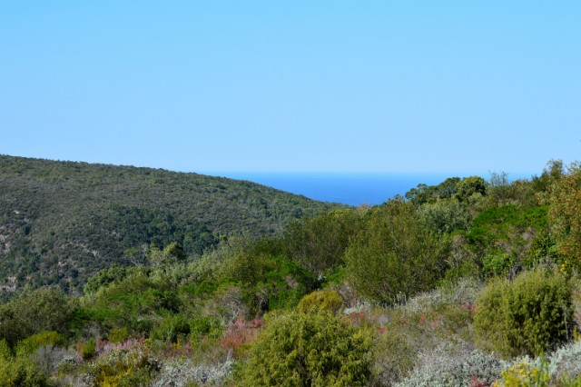 Property Ref: 04745, PEZULA PRIVATE ESTATE - Vacant Land
