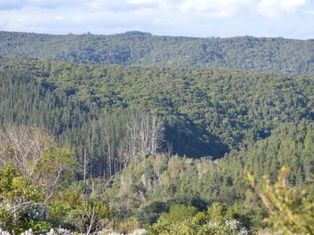 Property Ref: 11030, PEZULA PRIVATE ESTATE - Vacant Land